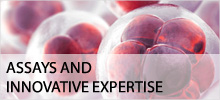 Assays and Innovative Expertisen