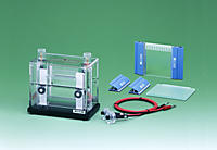 Electrophoresis AE-6500 dual mini slab with gel casting set